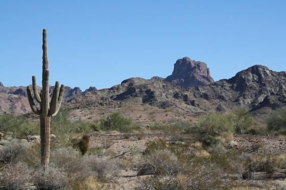 CastleDome17 - Quartzsite, Arizona: Castle Dome Mines - Ghost Town und Museum