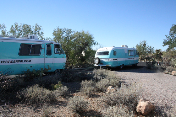 GilbertRay03 - Tucson, Arizona: Gilbert Ray Campground - riesige Saguaros im Tucson Mountain Park