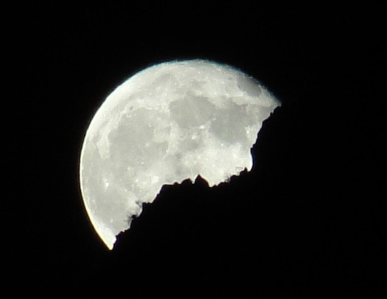 JoeLange19 - Quartzsite, Arizona: Auf Tour mit Natur-Photograph Joe Lange