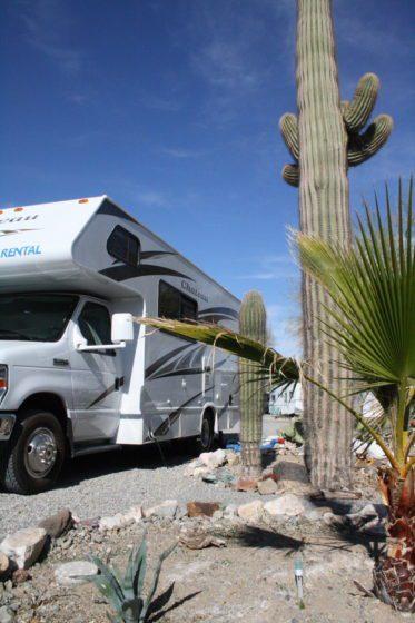 KaktusRV02 373x560 - Im Wohnmobil unterwegs in Nordamerika: Freiheit - das war einmal