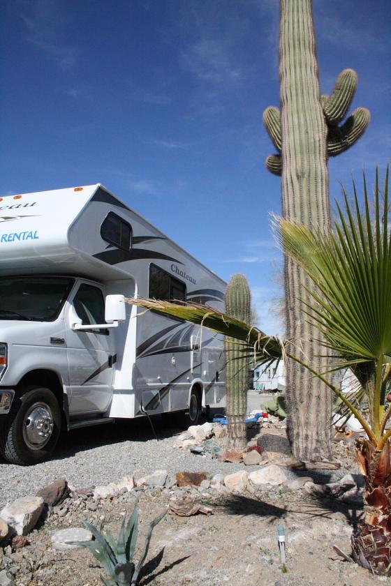 KaktusRV02 - Quartzsite, Arizona: Kaktus-Wohnmobil-Stellplatz deluxe im Scenic Road RV Park