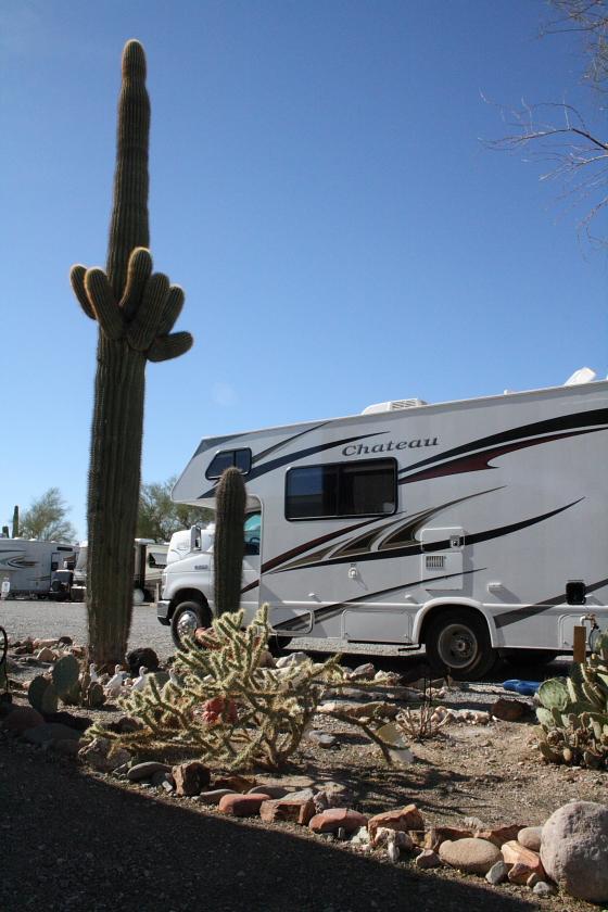 KaktusRV03 - Quartzsite, Arizona: Kaktus-Wohnmobil-Stellplatz deluxe im Scenic Road RV Park