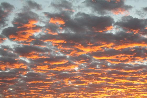 Quartzsite Arizona Morgenstimmung