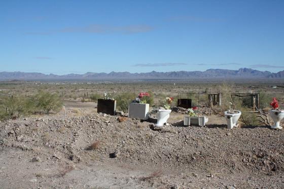 """Quartzsitetour03JAN11 - Quartzsite, Arizona: Blühende Kloschüsseln in der Wüste - """"Erdman's Place"""""""
