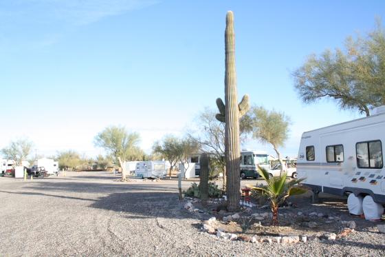 quartzsite03 - Quartzsite, Arizona: The Scenic Road RV Park - zu Gast bei Shawn und Randie