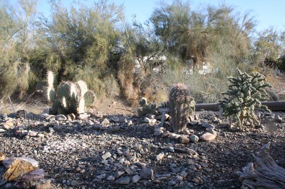 quartzsite05 - Quartzsite, Arizona: The Scenic Road RV Park - zu Gast bei Shawn und Randie