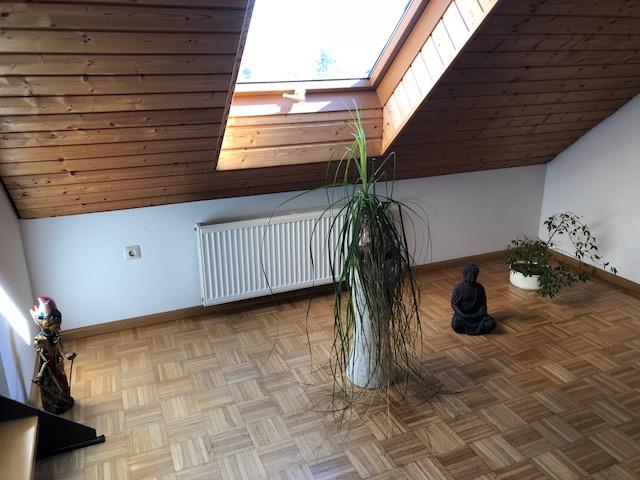 """Hippie Palme01 - Projekt """"Freiraum"""" am Hochrhein: Es wird noch grüner"""