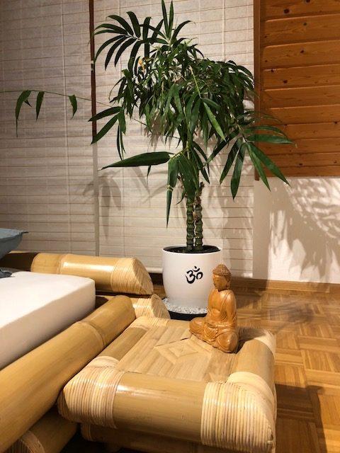 """buddha. bambus01 e1539457140333 - Projekt """"Freiraum"""" am Hochrhein: Martin Egloff, der Zauberkünstler"""