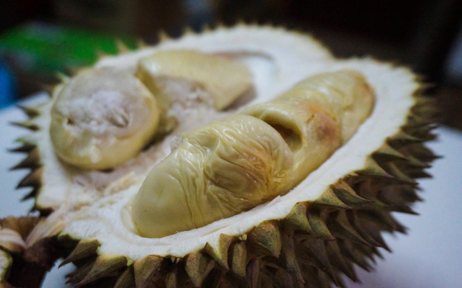 durian fruit 1920x1200 - Bali: Die Durian Frucht