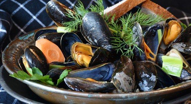 mussels 640 - Bon appétit: Die Muschelsaison hat begonnen