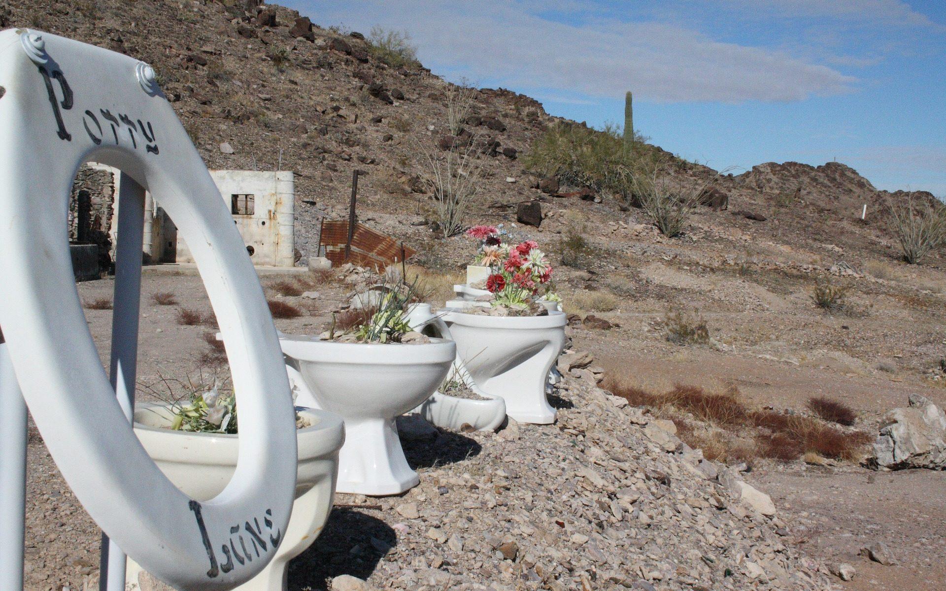 """quartzsite kloschuesseln wueste 1920x1200 - Quartzsite, Arizona: Blühende Kloschüsseln in der Wüste - """"Erdman's Place"""""""